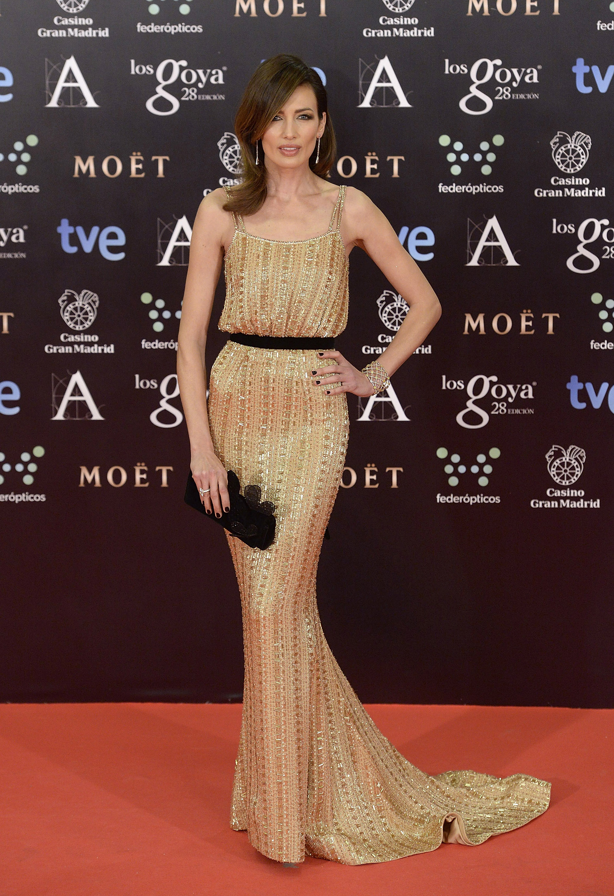 Goya Cinema Awards 2014 - Red Carpet